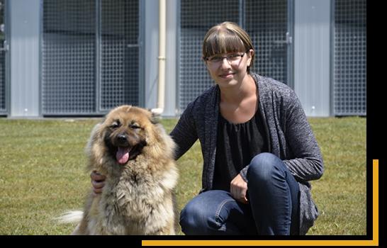 Pension pour chien et chat en Vendée